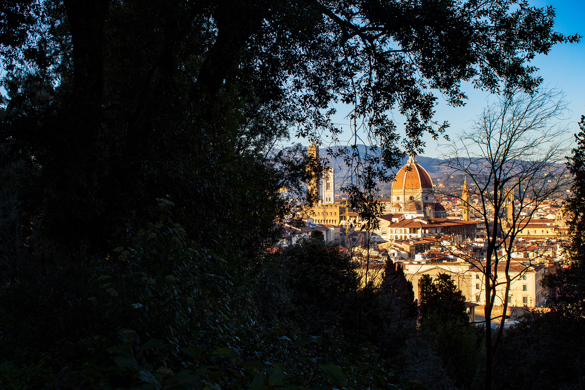Panoramas Upon Florence : The Enchanted Garden